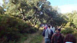 El camino de acceso al embalse discurre entre Alcornoques