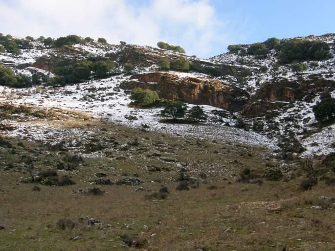 Sierra Blanquilla
