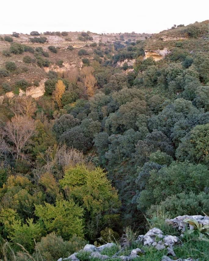 Garganta del Arroyo de la Ventilla, uno de los paisajes por los que Paco Marín luchó por conservar.