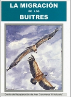 La Migracion de los Buitres, FAADN 2004