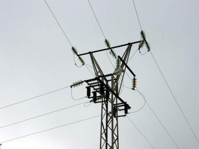 Apoyo eléctrico peligroso para grandes aves, provocó la electrocución del buitre