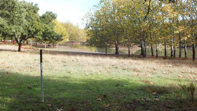 Esta señal de madera blanca y verde es la que marca el centro de la Cañada Real, con una anchura de 37 metros a cada lado