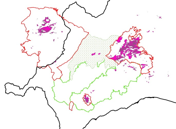 En color rosa, las zonas con Pinsapos o donde estos han existido. Marcado con punteado, el Corredor Verde del Pinsapo.