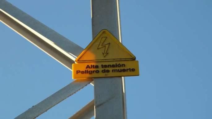 20150121 Buitre Electrocutado Casares 11