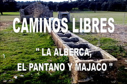 CAMINOS LIBRES Cartel MINI de Marcha del 28Marzo2015 - Copy