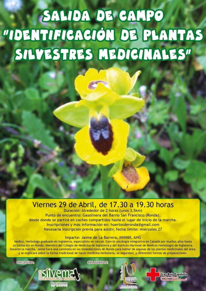 Marcha plantas medicinales